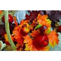 Утренник «Золотая осень»